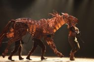 War Horse Returns