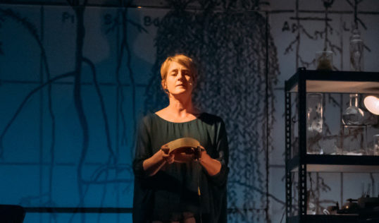 Karine Polwart in Wind Resistance. Photo: Mihaela Bodlovic