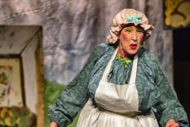 The Wonderful Story of Mother Goose